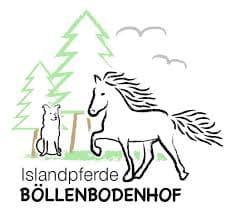 Islandpferde Böllendbodenhof